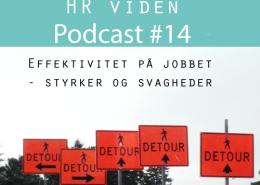 Podcast 14: SWOT effektivitet